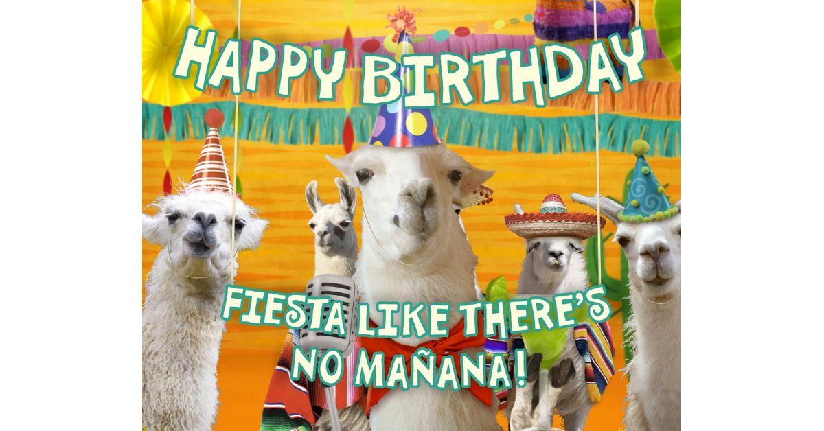 Llama La Bamba Birthday Ecard Famous Song