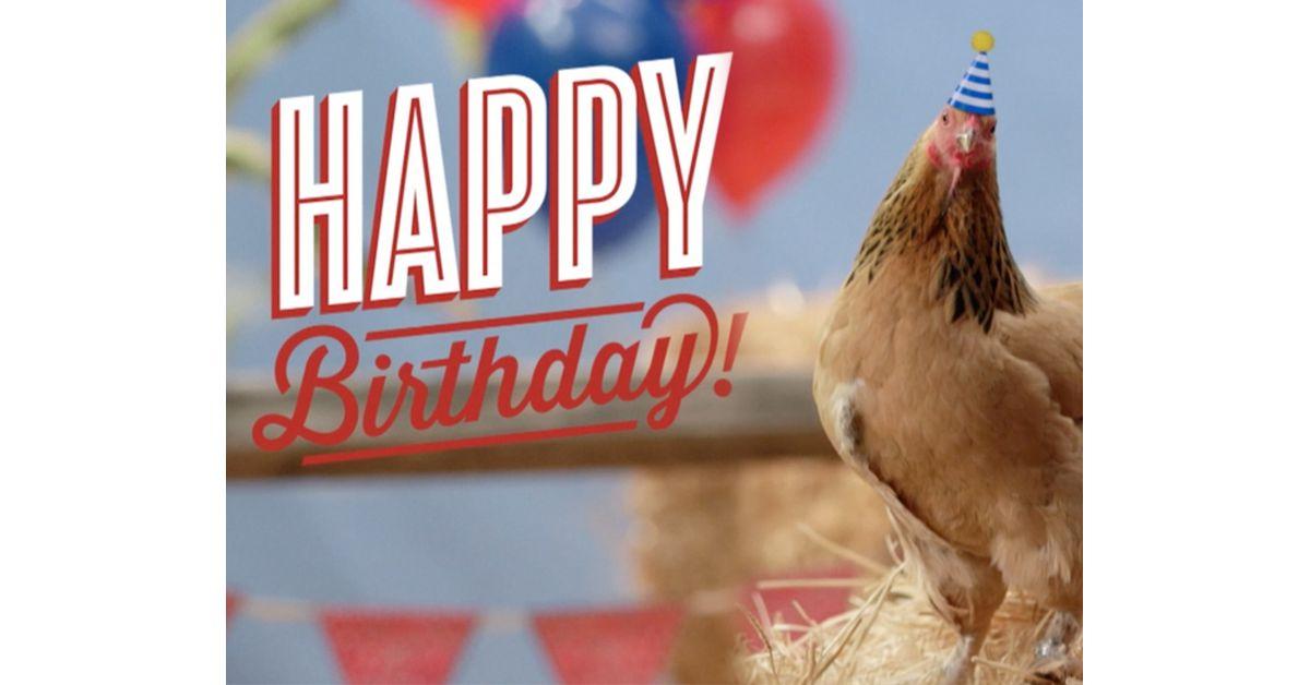 Chicken Birthday Card Chicken Greetings Card Funny Chicken Card Animal Card Birthday Card Chicken Card