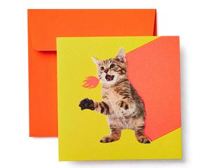 Kitten Blank Card - Birthday, Friendship, Thinking of You