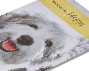 puppy birthday card