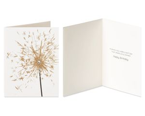 Cake and Sparkler Birthday Greeting Card Bundle, 2-Count