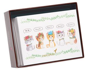 Kittens Thank You Boxed Blank Note Cards with Envelopes, 20-Count