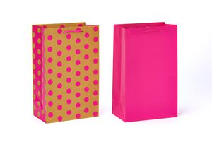 Gift Bags and Tissue Paper Bundle, 6 Count