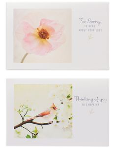 Assorted Sympathy Cards and Cream Envelopes, 12-Count