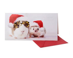 Furry Animals Christmas Boxed Cards and White Envelopes, 8-Count