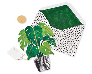 3D Plant Pop-Up Blank Greeting Card