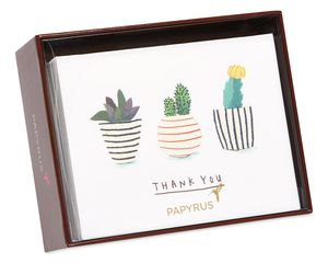 Succulents Boxed Thank You Cards and Envelopes, 20-Count
