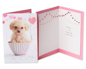 Pink Valentine's Day Card Bundle, 2-Count