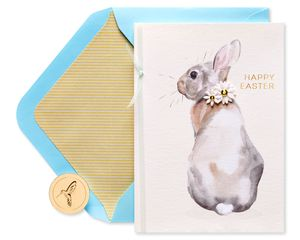 Easter Bunny Easter Greeting Card
