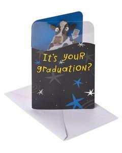 Cow Graduation Card