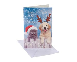 Cats and Dogs Christmas Boxed Cards and White Envelopes, 12-Count