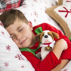 The Elf on the Shelf® Elf Pets, A Saint Bernard Tradition