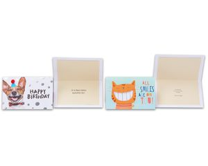 Starter Kit Everyday Greeting Card Collection, 16-Count