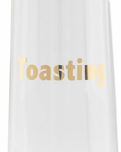 toasting & toasted champagne glasses (set of 2)