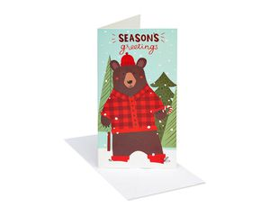Christmas Bear Gift Card Holder Boxed Cards and White Envelopes, 8-Count