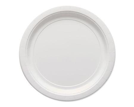 white paper dinner plates 20 ct