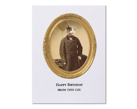 This Cat Birthday Card