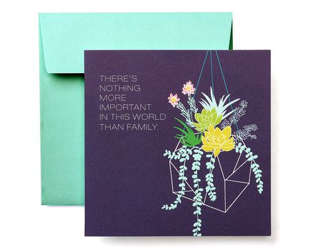 Blank Inside Paper Cards Shop American Greetings