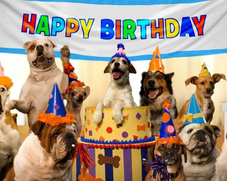 Fur-prise Birthday Video Ecard (Personalized Lyrics)