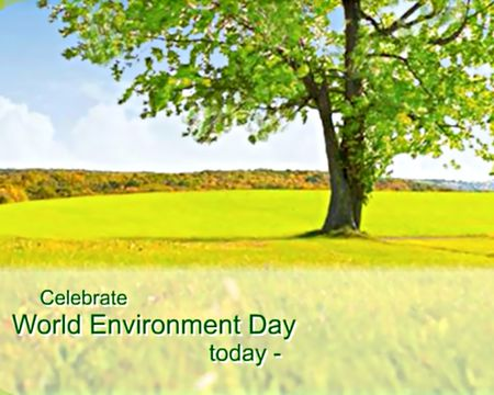 6/5 World Environment Day