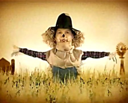 Top 5 Scarecrow Complaints