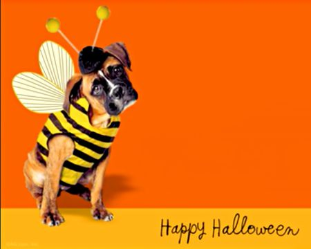 Halloween ecards send halloween greetings at american greetings youre awesome ecard m4hsunfo