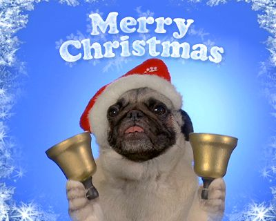 Doggy Carol of the Bells