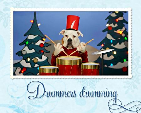 Funny christmas ecards funny animated christmas cards american the 12 dogs of christmas song ecard m4hsunfo