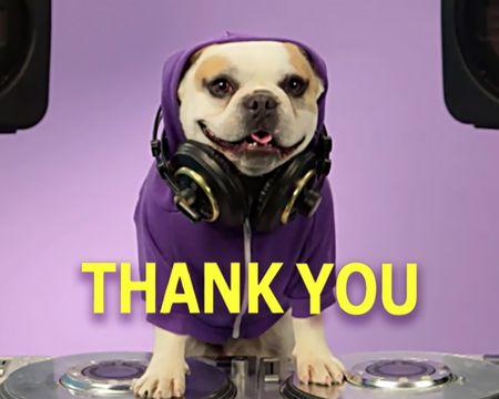 Gratitude Rap