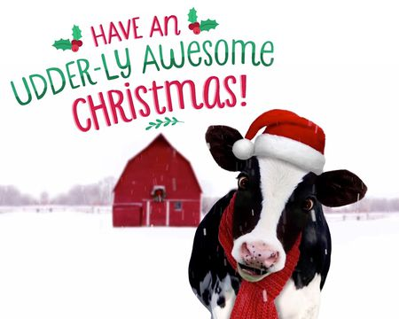 Wish You a Moo-ey Christmas (Fun Song)