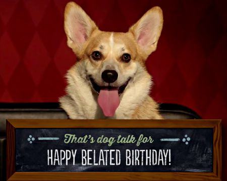 Dog-Gone Late Birthday Card