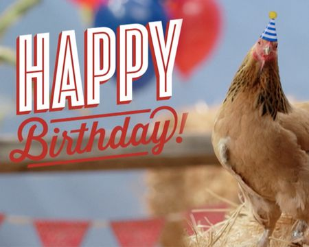 Chicken Playing Piano Birthday Song