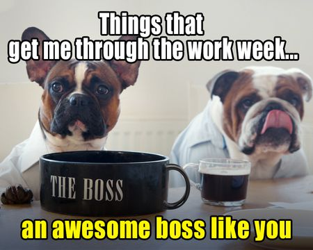 What Gets Me Through the Week Boss's Day Ecard
