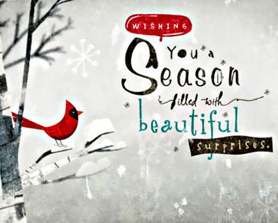 Season Surprises (Postcard)