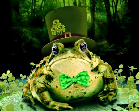 Toadally Irish (Talking Card)