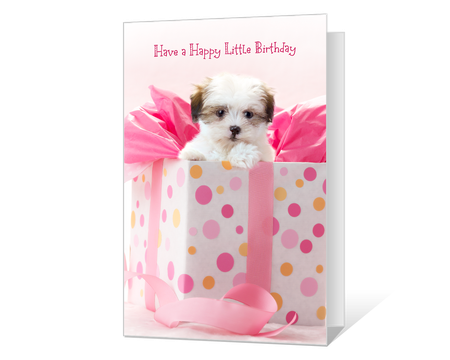 Cute Printable Birthday Cards For Her American Greetings