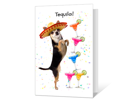 image regarding Birthday Cards Printable Funny identified as humorous Printable birthday Playing cards - American Greetings