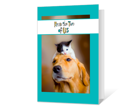 Printable birthday pets cards american greetings pets printable birthday cards bookmarktalkfo Choice Image