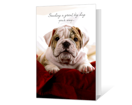 graphic relating to Printable Encouragement Cards referred to as Printable encouragement Playing cards - American Greetings