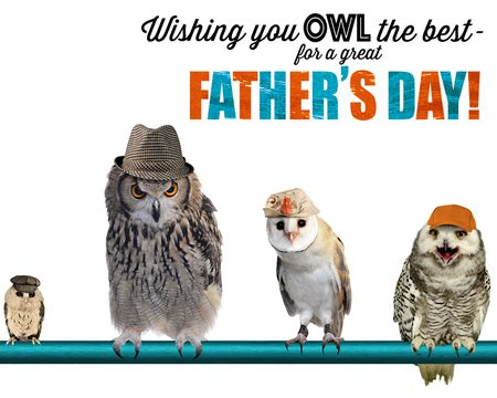 Owl the Best on Father's Day Ecard