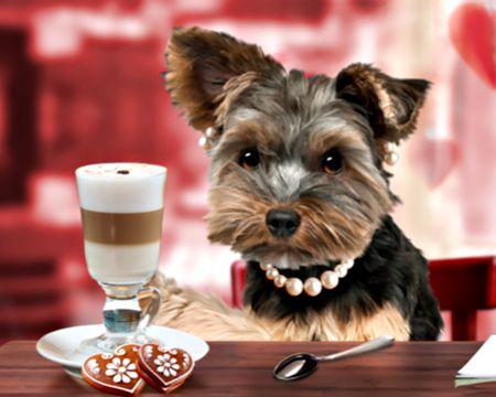 Love You a Latte (Talking Card)