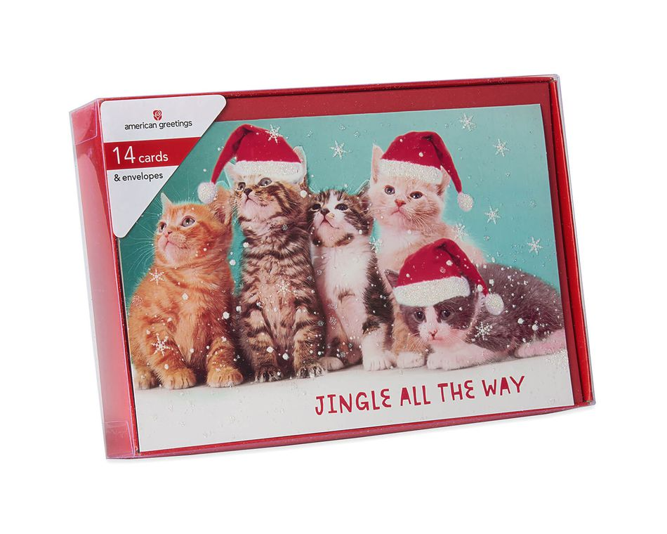 deluxe kitten holiday boxed cards and red envelopes 14 count