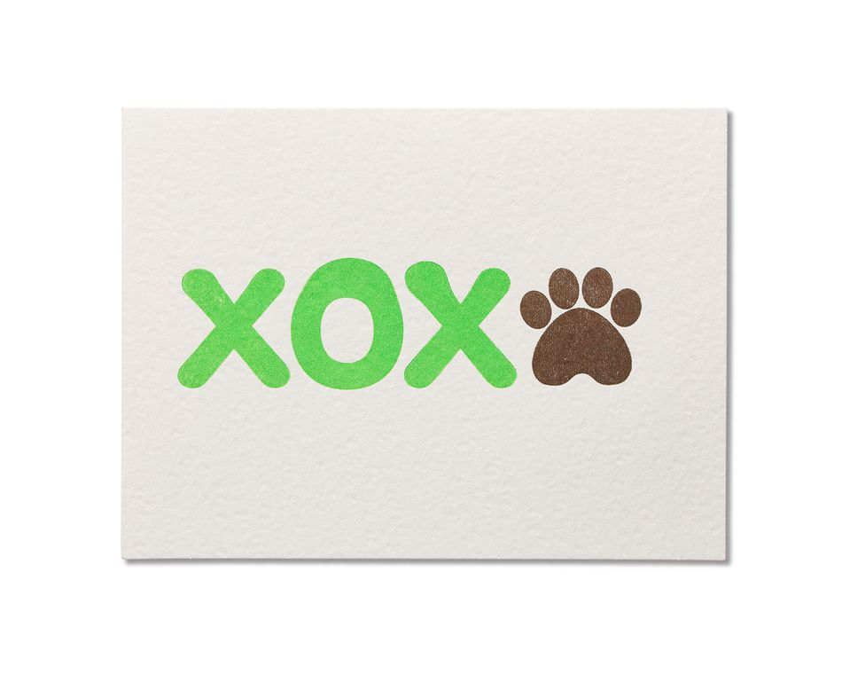 Xox birthday card from dog american greetings xox birthday card from dog bookmarktalkfo Images