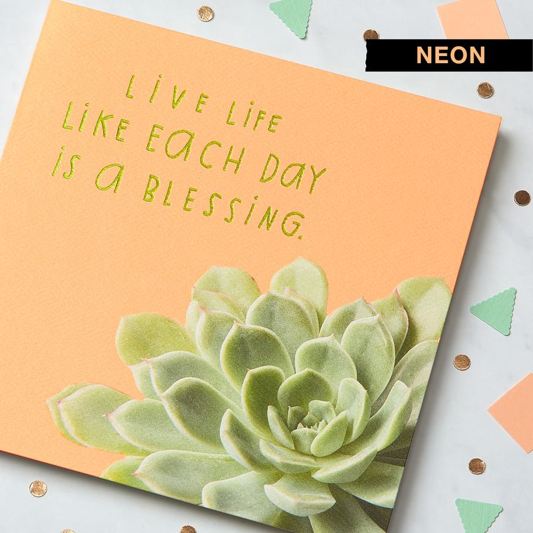 Succulent Greeting Card - Birthday, Thinking of You, Encouragement