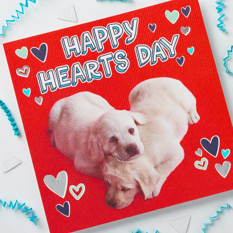 Puppies Valentine's Day Cards, 6-Count
