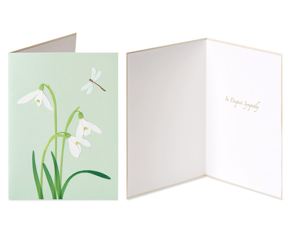 Crocus and Peace Sympathy Greeting Card Bundle, 2-Count
