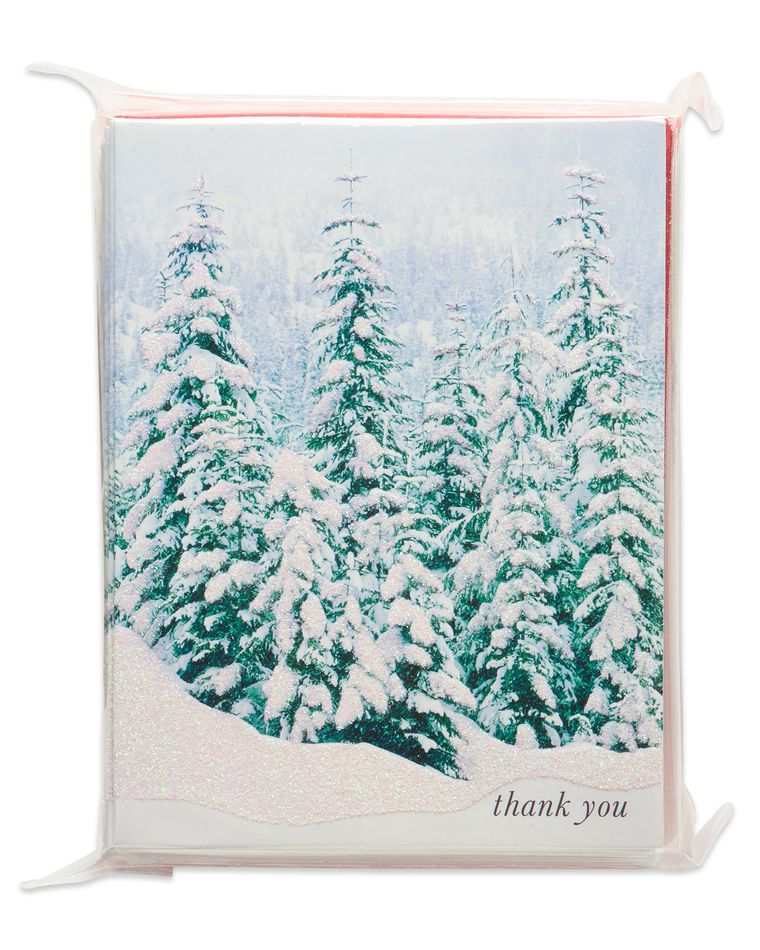 Evergreens with Snow Christmas Thank You Note Cards, 25 Count