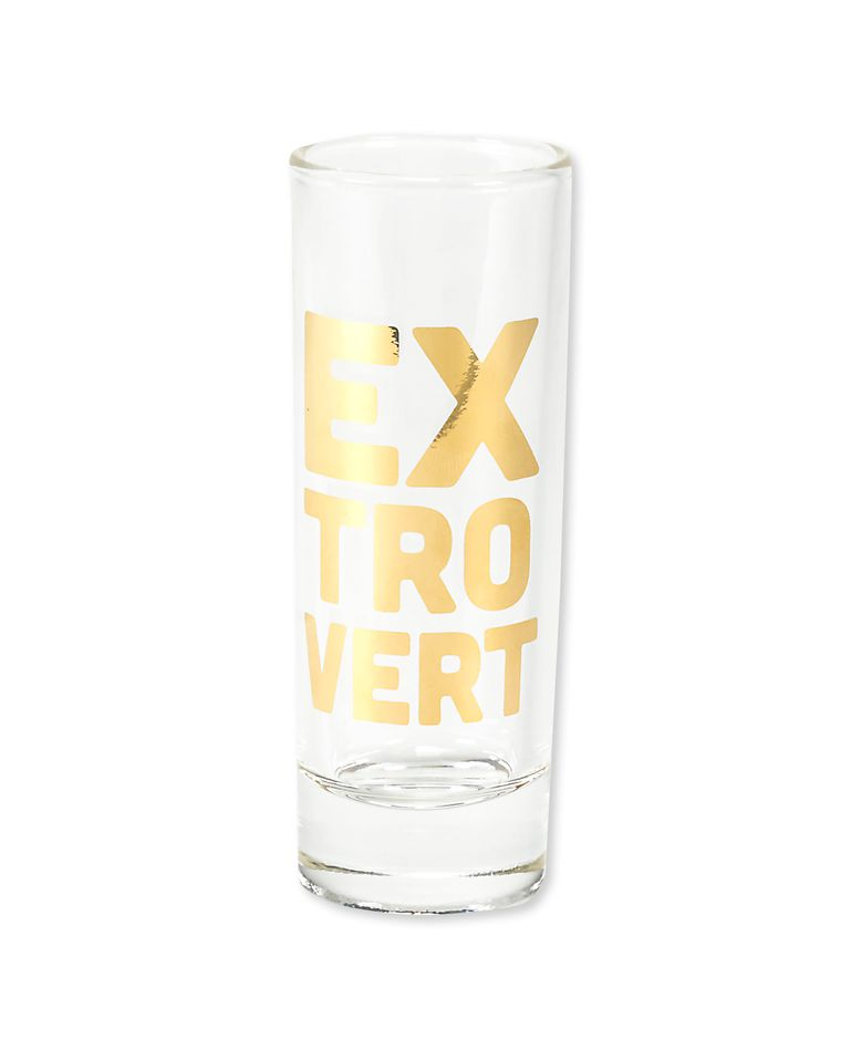 introvert & extrovert shot glasses (set of 2)