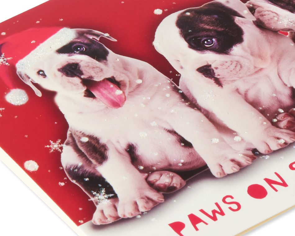 Deluxe Dog Christmas Boxed Cards and Red Envelopes, 14-Count