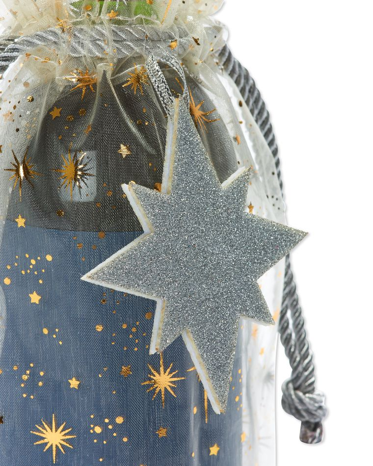 Metallic Stars Holiday Beverage Bag